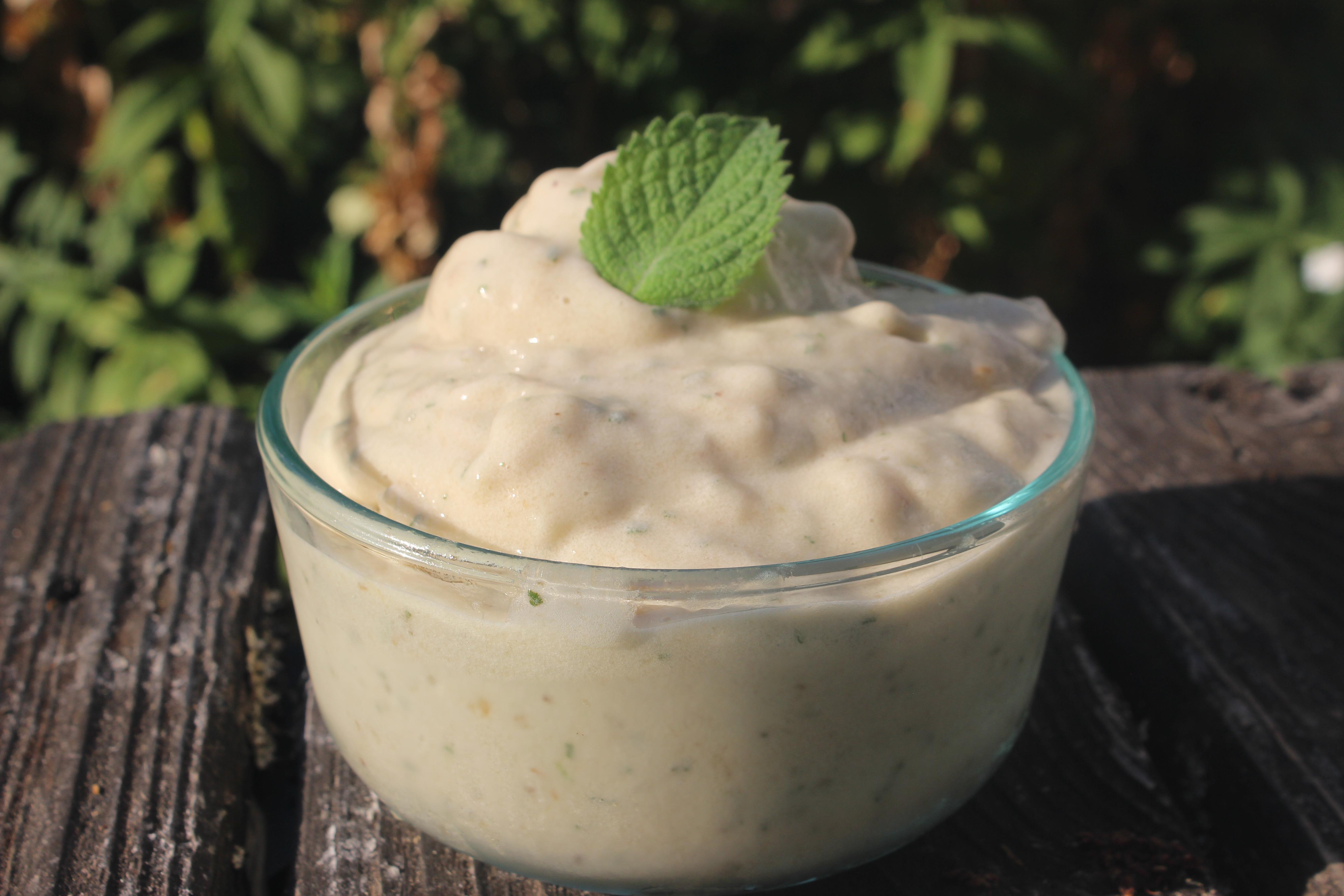 hep-food-mint-banana-ice-cream