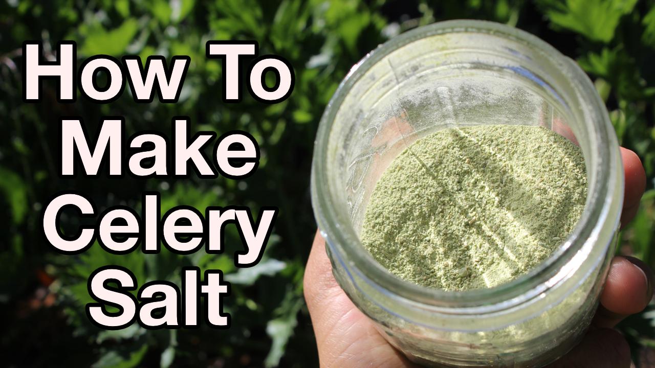 how-to-make-celery-salt-yt-thumbnail